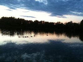 Evening in Vrbice ... duck family included ... :D by DJFreezy