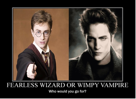 Potter or Cullen? by Dragonheart69