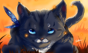 Kitty cat by SunsetDragonfly