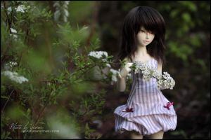 Candy flower by yenna-photo