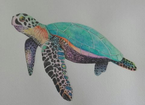 Turtle WIP by DrawingNynke