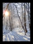 Snow 6 by MrParts
