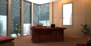 Director Office view1 by simbahswan