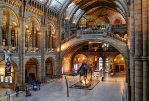 Natural History Museum by Silver-Guild
