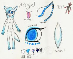 new ref sheet for angel by ninja-my-cat