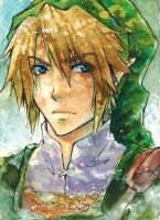 grumpy link in summer ACEO by Laovaan