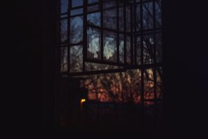 Window by DVel0x