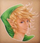 Link by Draconis-Silver