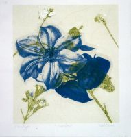 Floral Monotype 1 of 6 by designsbykari