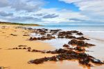St. Combs Beach by PomPrint