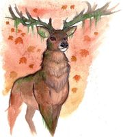 Stag of Autumn by shiverz