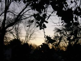 Dusk in suburbia by ArtisnotanAccident