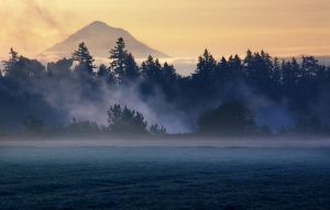 Woodburn Fogs by CezarMart