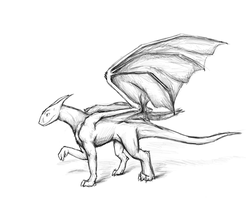 Dragon - Sketch by jo-shadow