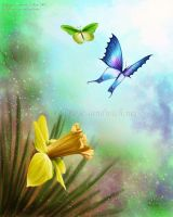 Butterfly Love by Prima-Donna