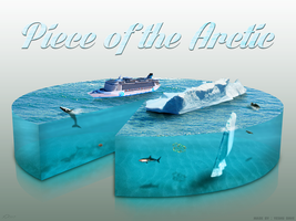 Piece Of The Arctic by YeshuDave029