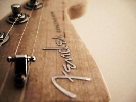 Fender by BirdieG