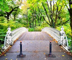 Central Park Bridge by thale04