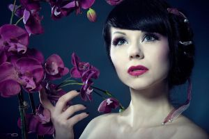 Orchid by D-O-PHOTOGRAPHY