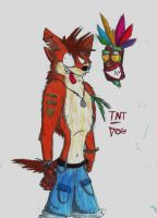 Crash new style XP by TNT-DOG