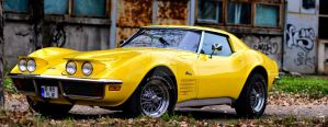 Chevrolet Corvette by tricksul