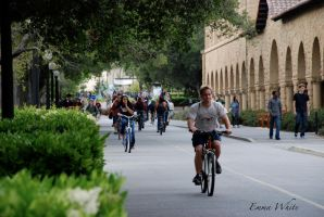The Epitome of Stanford Travel by kaminskygirl