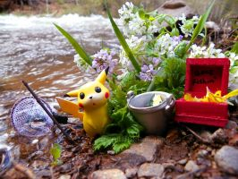Pikachu goes fishing by Bimmi1111