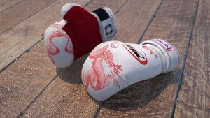 Boxing Gloves by buckeyo