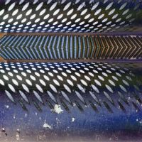 Grating Edge Autostereogram by aegiandyad