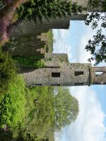 castle in Blarney 9 by indeed-stock