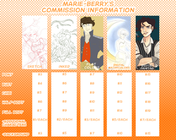 commission information by marie-berry