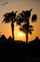 Sunset and palmtrees by lalylaura