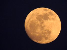 Easter Moon by CanveySue