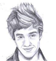 Liam From One Direction by Lu-Siobhan