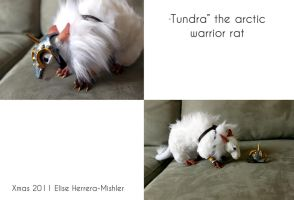 Tundra the Warrior Rat by MiiruFae