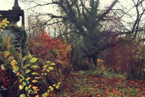Autumn I by Mischstock
