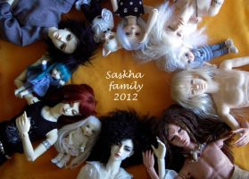 bjd family 2012 by saskha