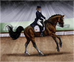 Ambassador - GP Dressage by Tigra1988