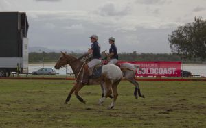 STOCK - Polo Day 2013-8 by fillyrox