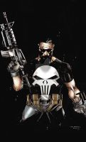 Punisher Colored Ver by vonrandal