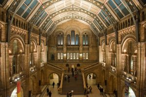 National History Museum 2 by vortxbr