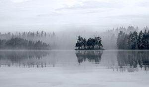 Cold mist by RobinHedberg