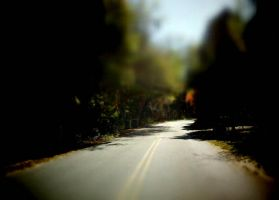 A road less traveled by CatawampusMind