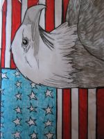 usa flag with eagle by wolfwarrior74