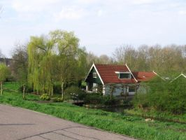 house with willow by schaduwvacht
