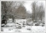 Snowy Gate by Forestina-Fotos
