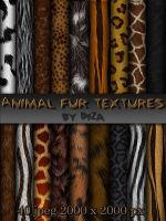 Animal fur textures by DiZa-74