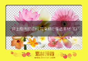 beautiful png flowers _2jpstar by outgirl