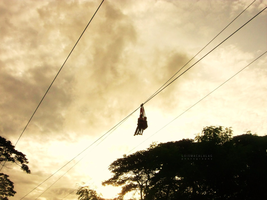 Zip Line. by monsterseverywhere