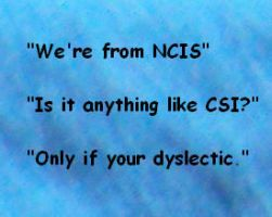 NCIS quote by Alondra-chui